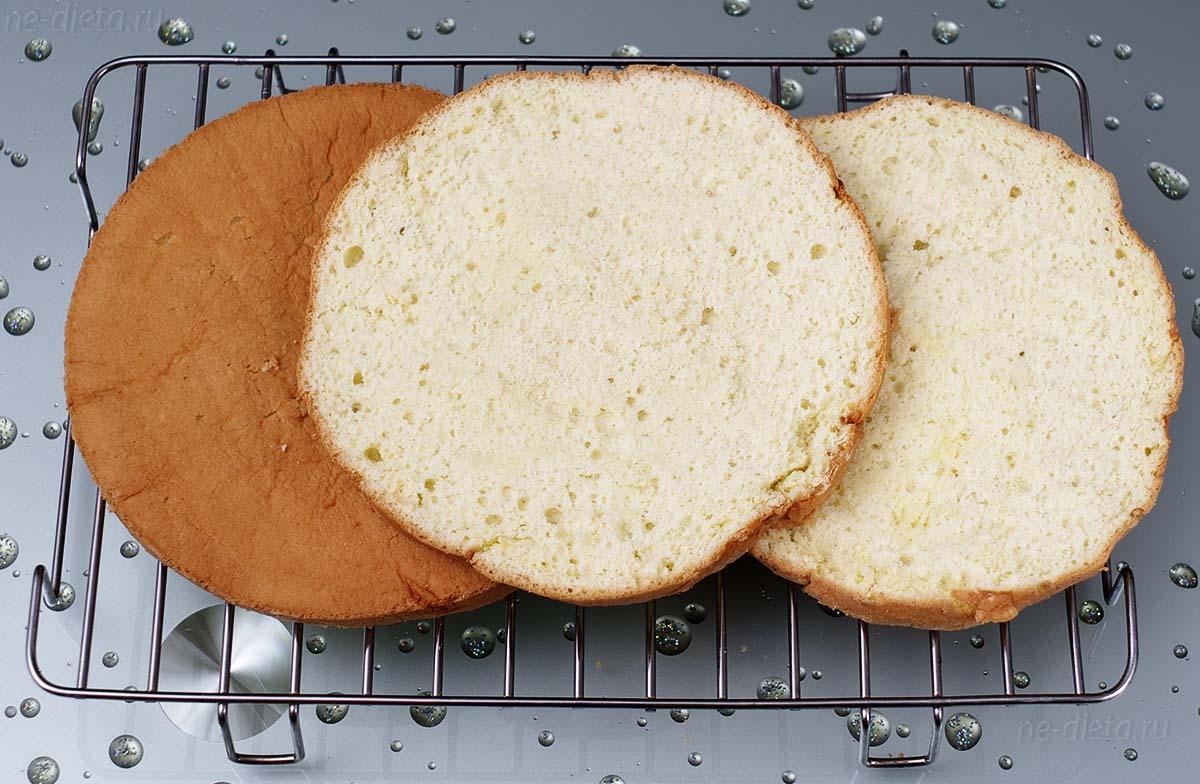 Бисквитные коржи для торта