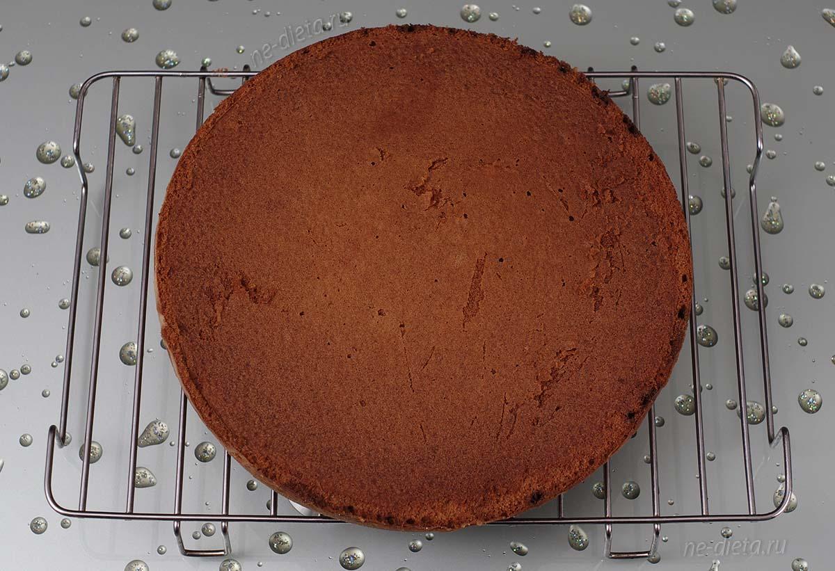 Масляный бисквит для пирожных