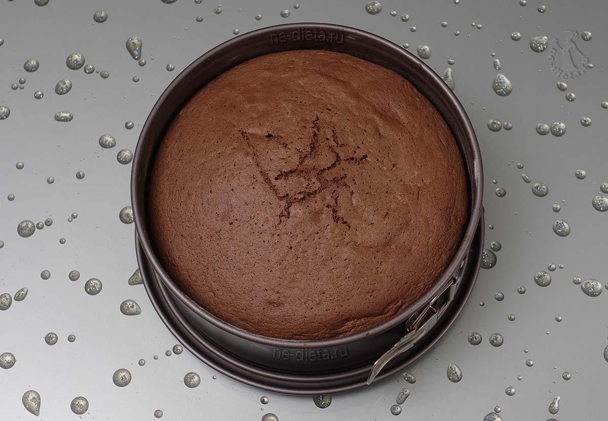 Шоколадный бисквит для торта