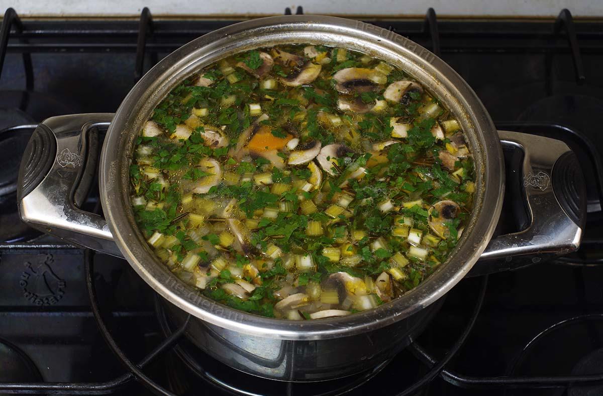 Суп с говядиной, перловкой и грибами