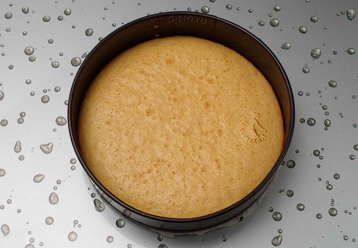 Бисквит для творожного торта